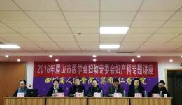 杨荣秀、吕群主任受邀参加2016年眉山市医学会妇幼专委会妇产科专题学术讲座