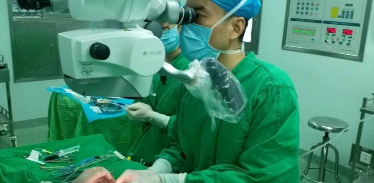 """""""睾丸同步显微取精术""""又一次在我中心成功实施"""